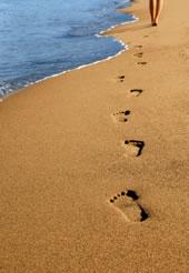 Reflexology - Rebalance your life